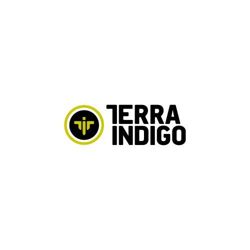 Terra Indigo | логотип